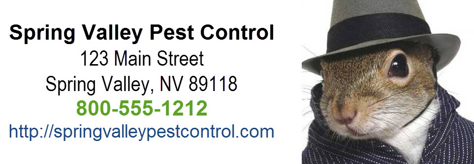 Spring Valley Pest Control Business Card