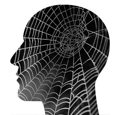 Arachnophobia Its All in the Head 400