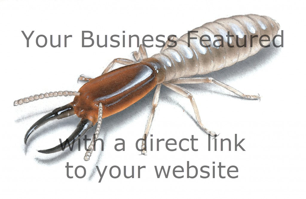 Your Business Promotion