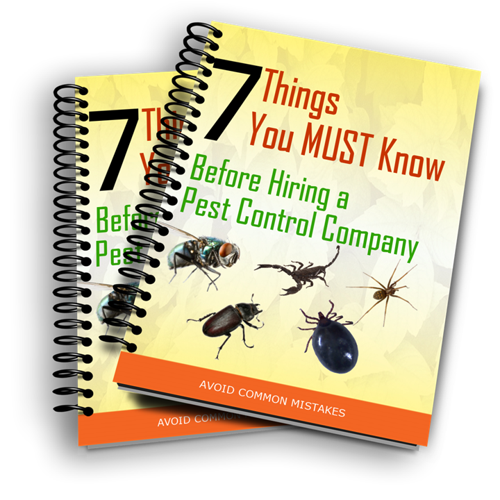 Spring Valley Pest Control. 7 Things You Must Know Before Hiring a Pest Control Company