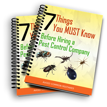 Hiring a Pest Control Contractor. Things to Know.